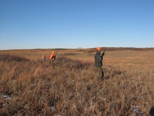 Kansas Quail & Pheasant 2008